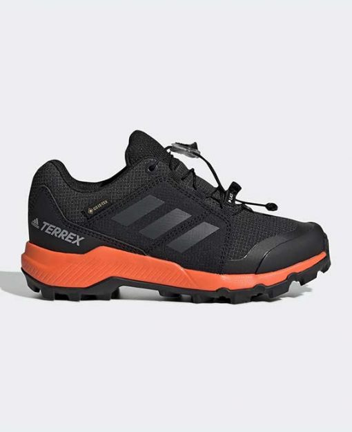 adidas-terrex-gtx-BC0598-(1)