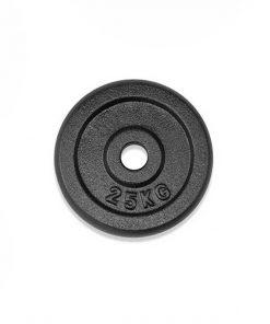 teg-disk-f25-2,5kg-dy-011-2,5